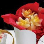 White Orchid Candles - Mini x 28 pack image